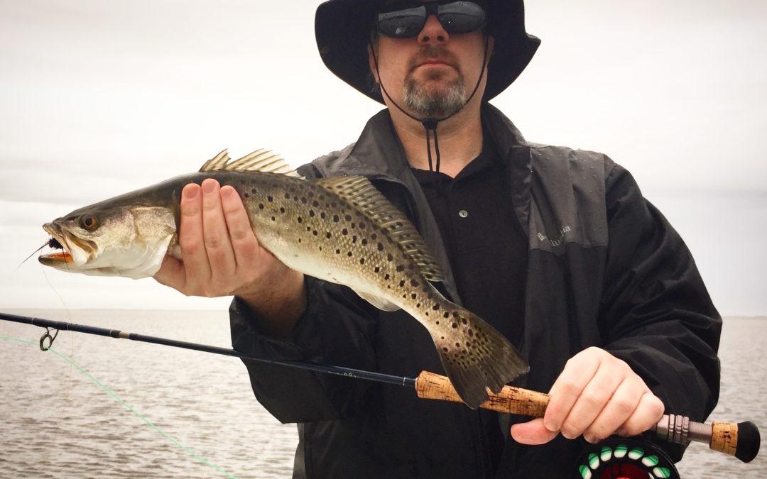 Orlando Fishing Report Jan 8th